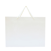 Gloss Laminated Carrier Bag 200 Gsm